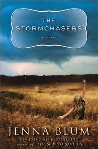 The Stormchasers book cover