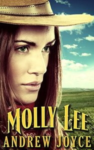 Molly Lee book cover